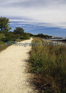 a dirt path beside the ocean